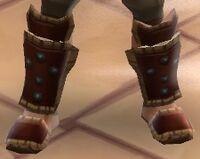 True North Boots2