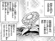 Tear Flower 2