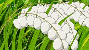 Rawice Egg Eps 67