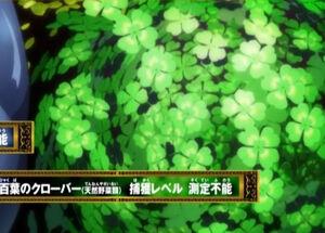 Hundred Leaf Clover
