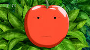 Surprise Apple not surprised1