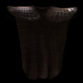Grounding cloak icon