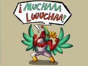 Hawlucha!!!