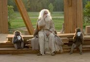 Evan Almighty.2