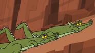 Croc approach