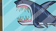 SharkTopDog