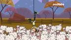 Australia cody grabs first sheep
