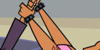 List of Total Drama Presents: The Ridonculous Race injuries