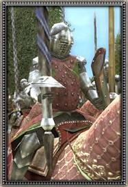 Hungarian Chivalric Knights