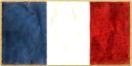 France Flag NTW