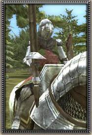 Hungarian Royal Banderium