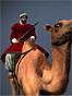 Shaturnal Camel Gunners NTW Icon