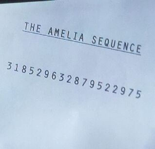 The-Amelia-Sequence