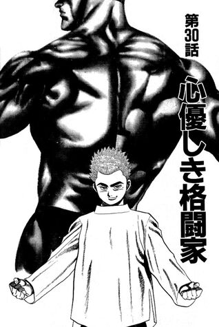 File:Chapter 30 cover.jpg