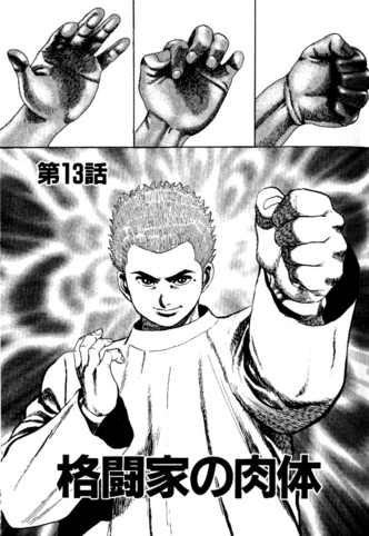 File:Chapter 13 cover.png