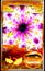 File:Card203yuyu.png