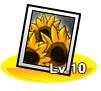 Devilish Sunflower