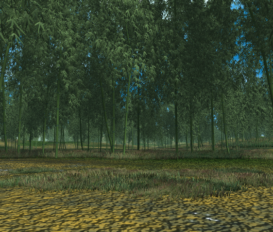 File:Bamboo forest.PNG