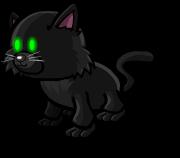 File:BlackCat.png