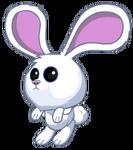 Bunny pet