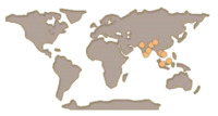 Peacock map