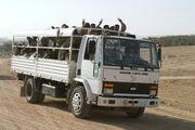 Iraqi Ashok Leyland truck