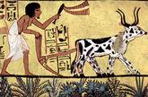 Maler der Grabkammer des Sennudem 001