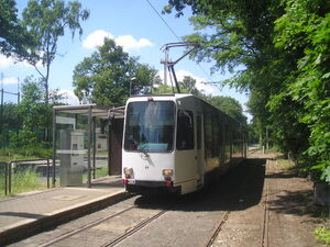 LP5303832Uhlenhorstweg 280
