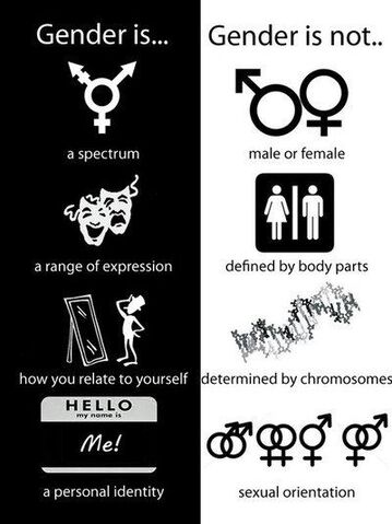 File:Gender is and is not.jpg