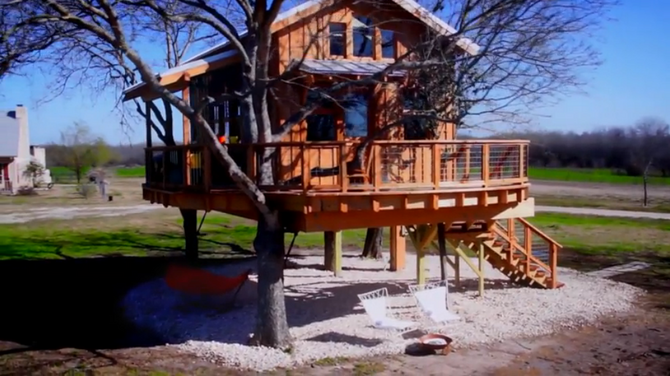 Treehouse Masters Irish Cottage treehouse masters wiki | fandom poweredwikia