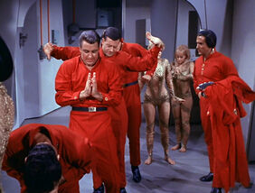 Space Seed 219