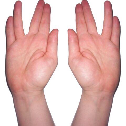 File:Kohanim hands blessing photo.jpg