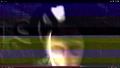 Thumbnail for version as of 02:59, November 18, 2013