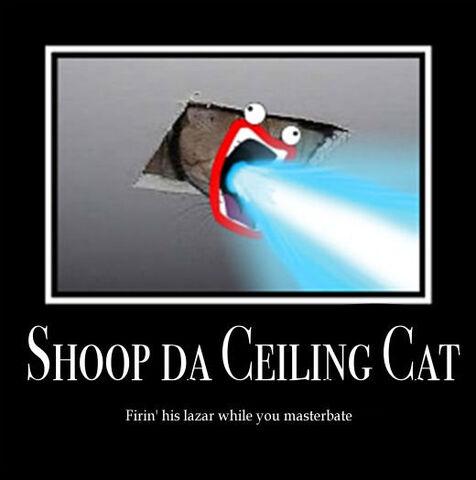 File:Shoop da Ceiling Cat by Little Lovely.jpg