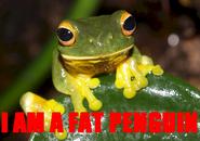 FatPenguin