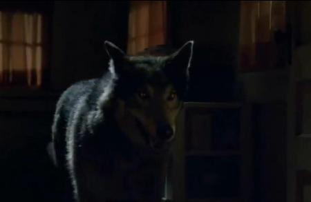 File:Bikerwolf.JPG