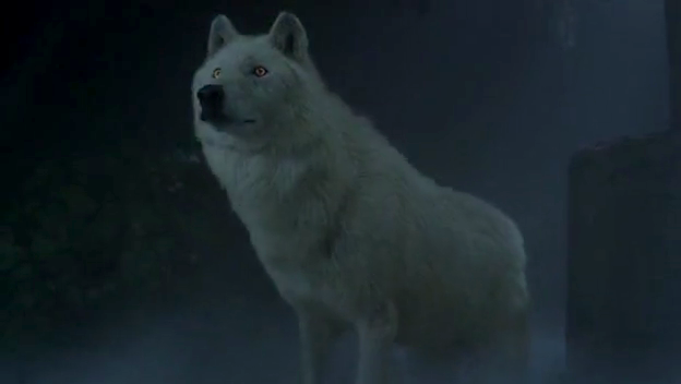 File:Debbie in wolf form.png