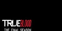 Gallery:Season 7 Images