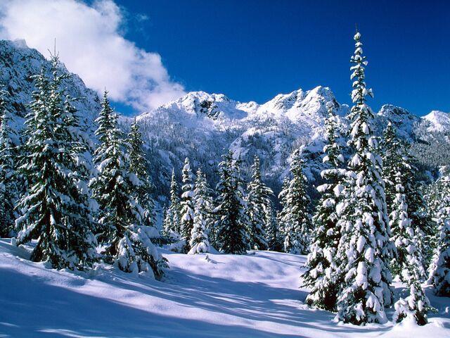File:Winter-wallpaper-10.jpg