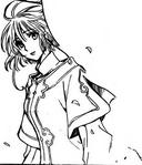 Sakura li