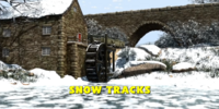 Snow Tracks/Gallery