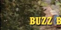 Buzz, Buzz/Gallery