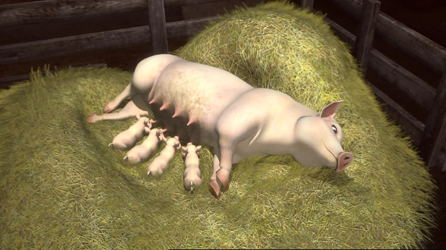 File:ThomasAndThePigs81.png