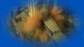 Thumbnail for version as of 07:50, November 27, 2016