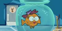 Agent Goldfish