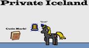 Privateiceland