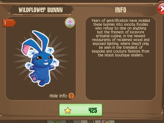 File:Wildflower Bunny 1 (Info).jpg