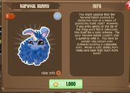 Narwhal Bunny 2 (Info)