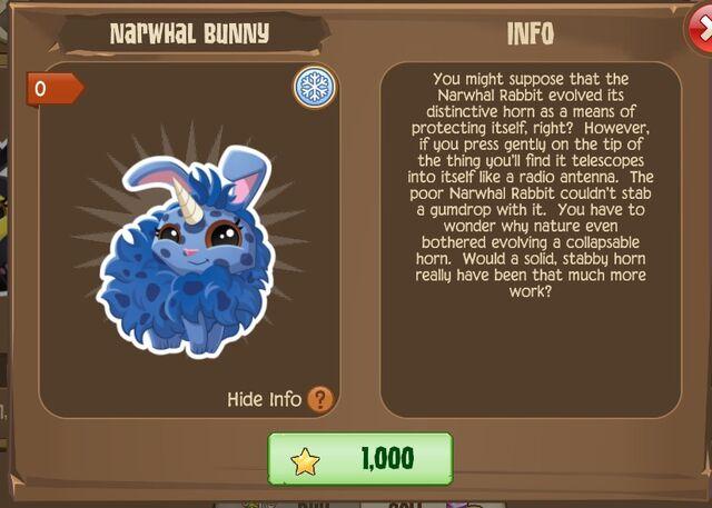 File:Narwhal Bunny 2 (Info).jpg