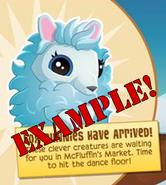 Bunny Gallery Example